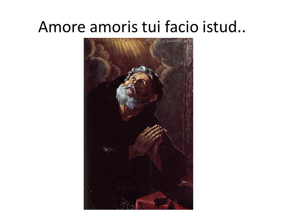 Amore amoris tui facio istud..