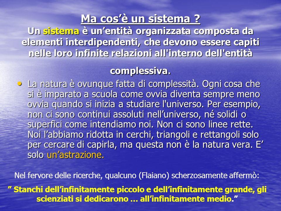 Ma cosè un sistema ? Un sistema è unentità organizzata composta da elementi interdipendenti, che devono essere capiti nelle loro infinite relazioni al