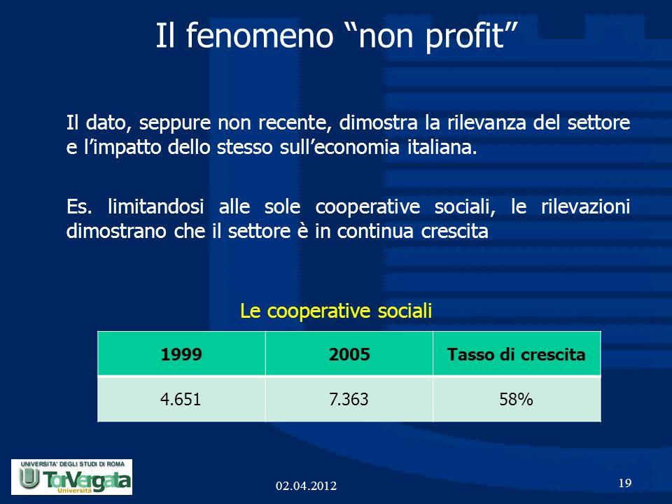Il fenomeno non profit 19 02.04.2012 Il dato, seppure non recente, dimostra la rilevanza del settore e limpatto dello stesso sulleconomia italiana. Es