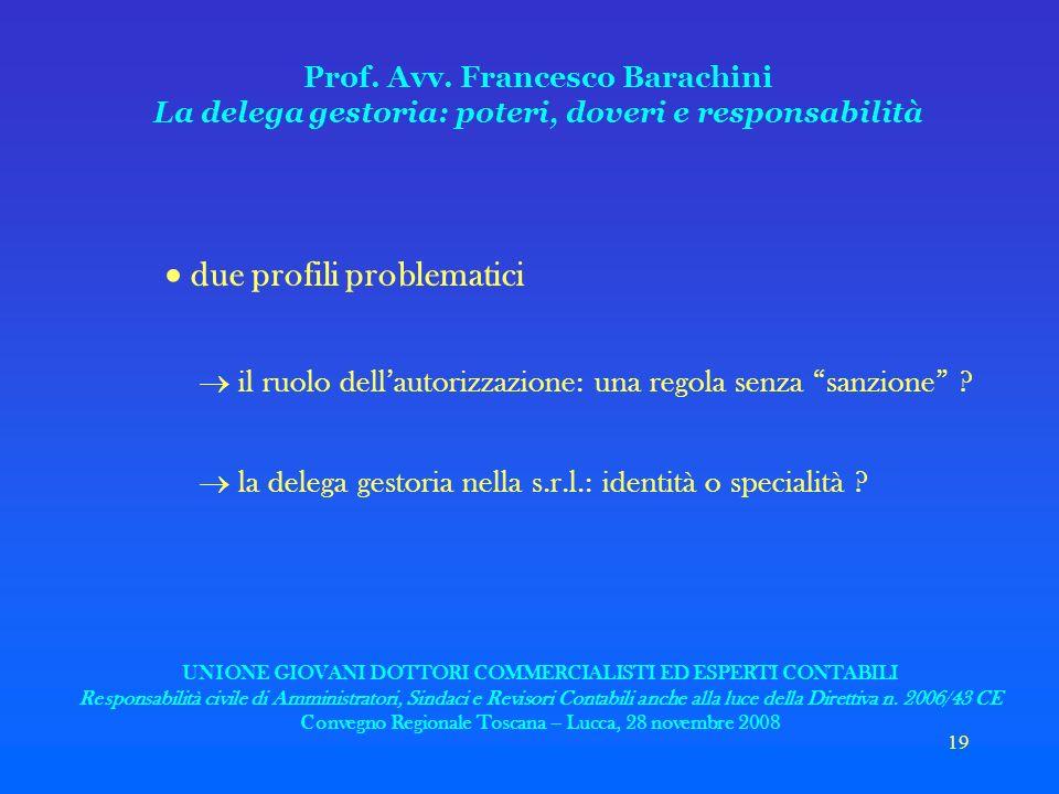 19 Prof. Avv. Francesco Barachini La delega gestoria: poteri, doveri e responsabilità due profili problematici il ruolo dellautorizzazione: una regola