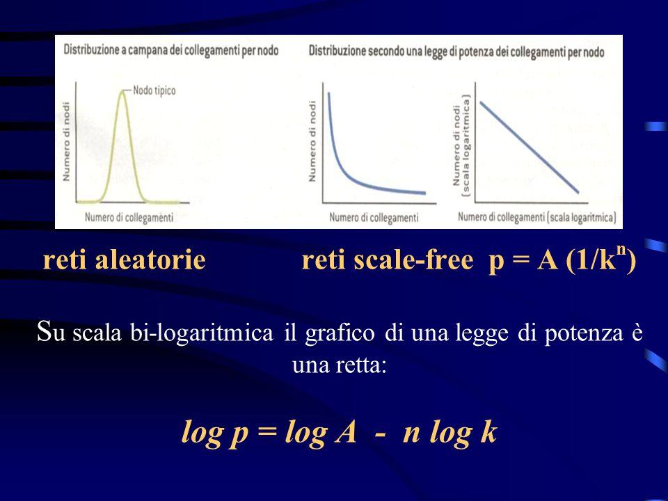 reti aleatorie reti scale-free p = A (1/k n ) S u scala bi-logaritmica il grafico di una legge di potenza è una retta: log p = log A - n log k