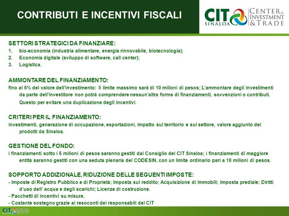 CONSISTENCIA SETTORI STRATEGICI DA FINANZIARE: 1.bio-economia (industria alimentare, energia rinnovabile, biotecnologia); 2.Economia digitale (sviluppo di software, call center); 3.Logistica.