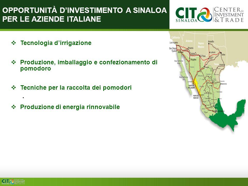 OPPORTUNITÀ DINVESTIMENTO A SINALOA PER LE AZIENDE ITALIANE Tecnologia dirrigazione Produzione, imballaggio e confezionamento di pomodoro Tecniche per la raccolta dei pomodori Produzione di energia rinnovabile.