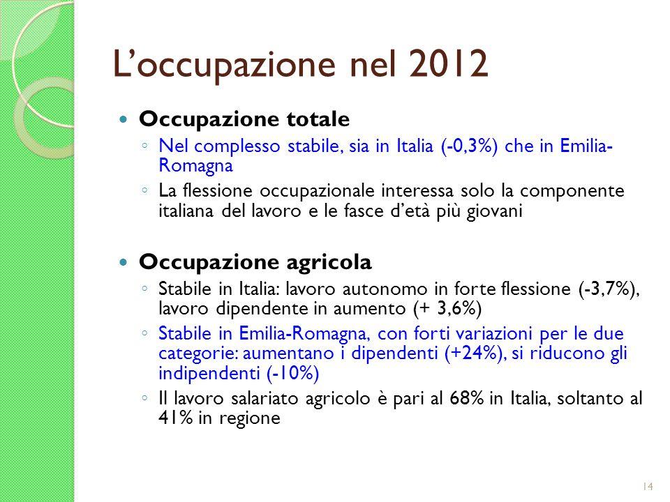 Loccupazione nel 2012 Occupazione totale Nel complesso stabile, sia in Italia (-0,3%) che in Emilia- Romagna La flessione occupazionale interessa solo