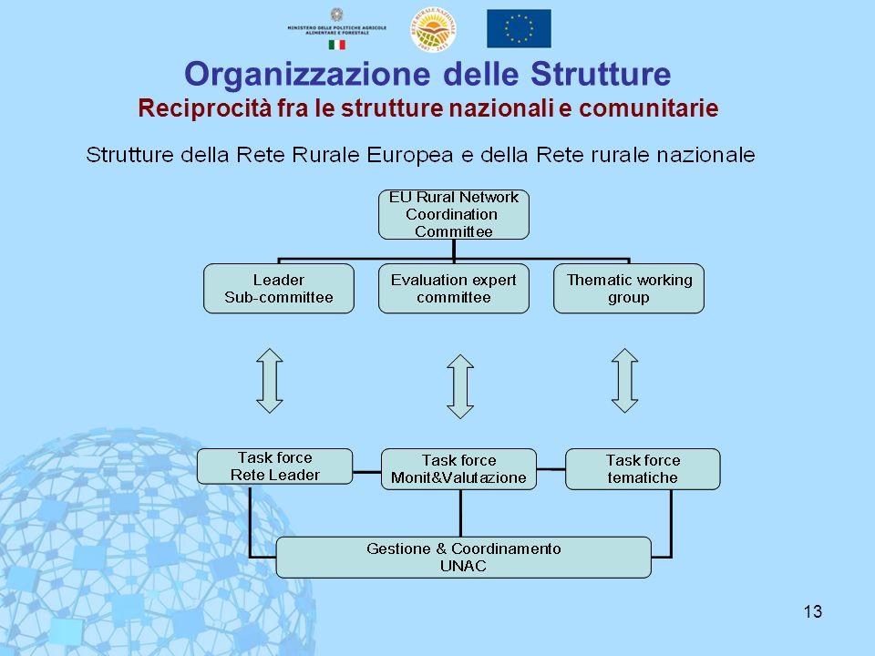 13 Organizzazione delle Strutture Reciprocità fra le strutture nazionali e comunitarie