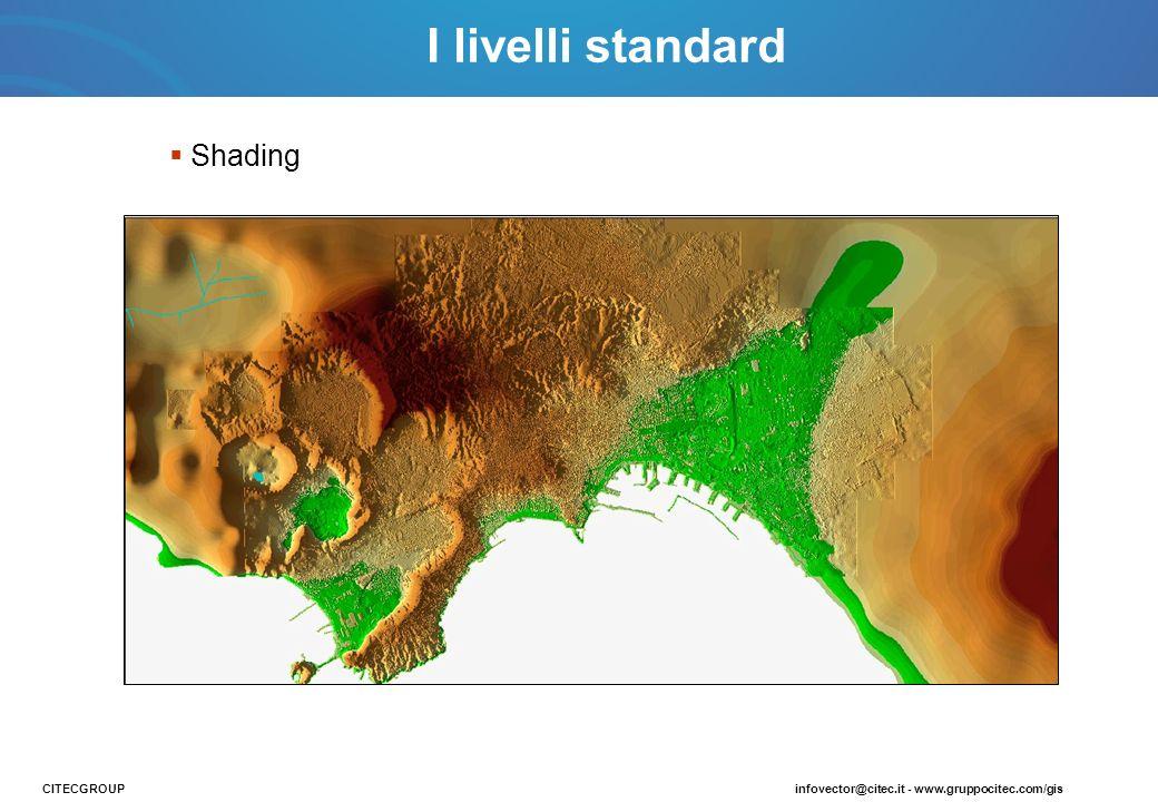 Shading CITECGROUPinfovector@citec.it - www.gruppocitec.com/gis I livelli standard