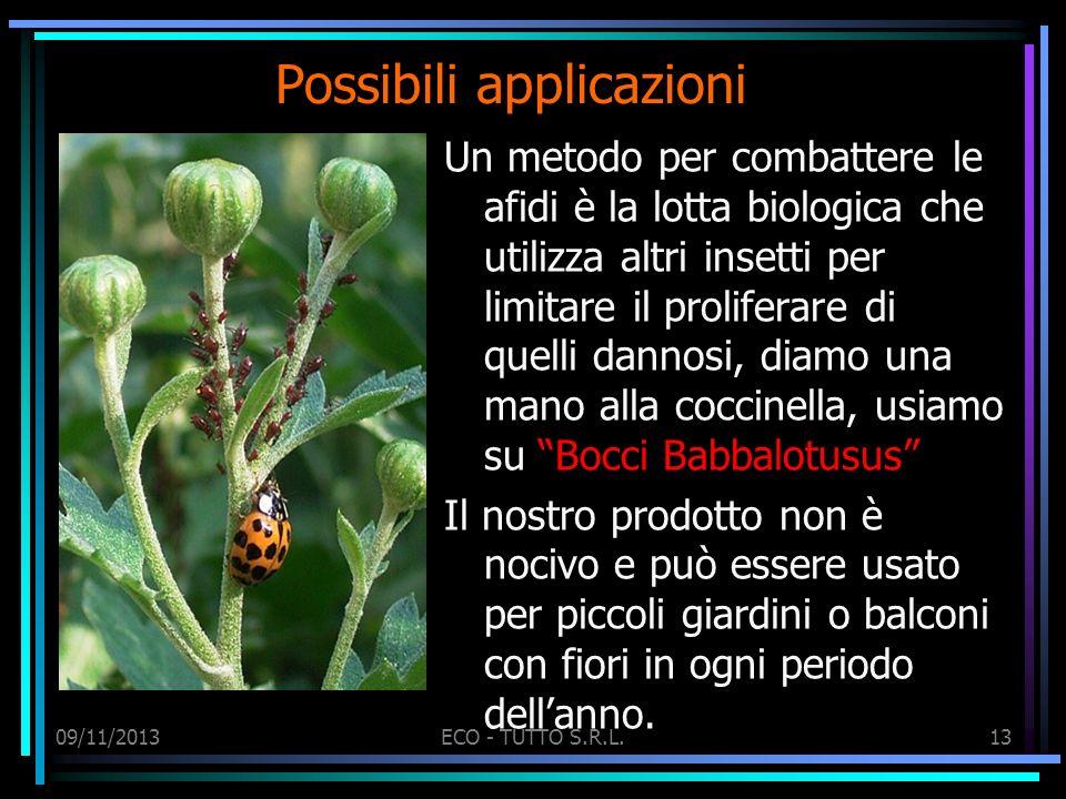 09/11/2013ECO - TUTTO S.R.L.13 Possibili applicazioni Un metodo per combattere le afidi è la lotta biologica che utilizza altri insetti per limitare i