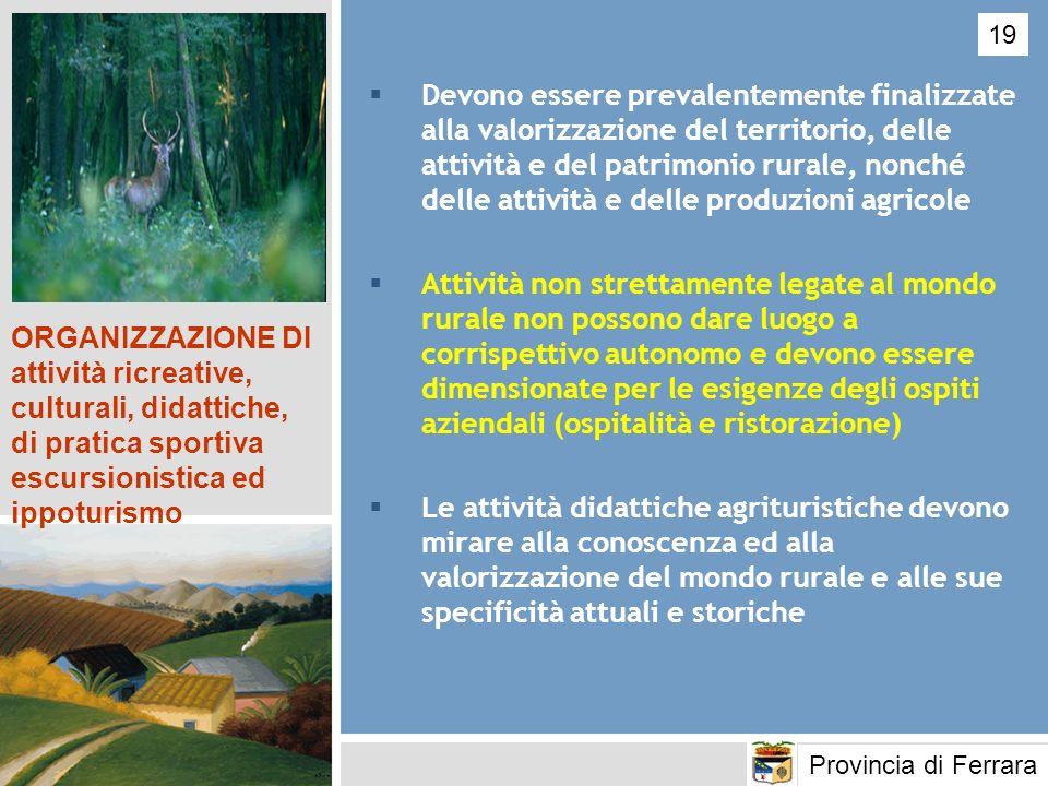 Devono essere prevalentemente finalizzate alla valorizzazione del territorio, delle attività e del patrimonio rurale, nonché delle attività e delle pr