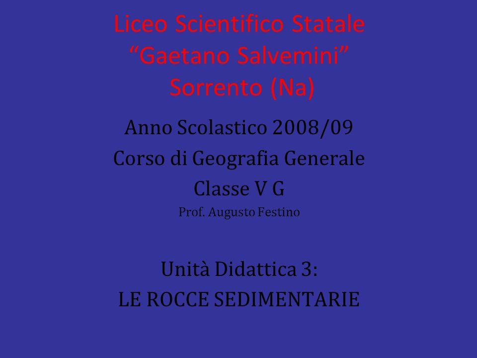 Liceo Scientifico Statale Gaetano Salvemini Sorrento (Na) Anno Scolastico 2008/09 Corso di Geografia Generale Classe V G Prof. Augusto Festino Unità D