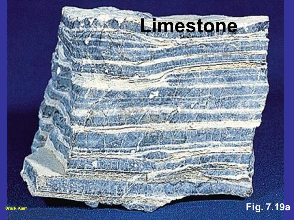 Breck Kent Fig. 7.19a Limestone