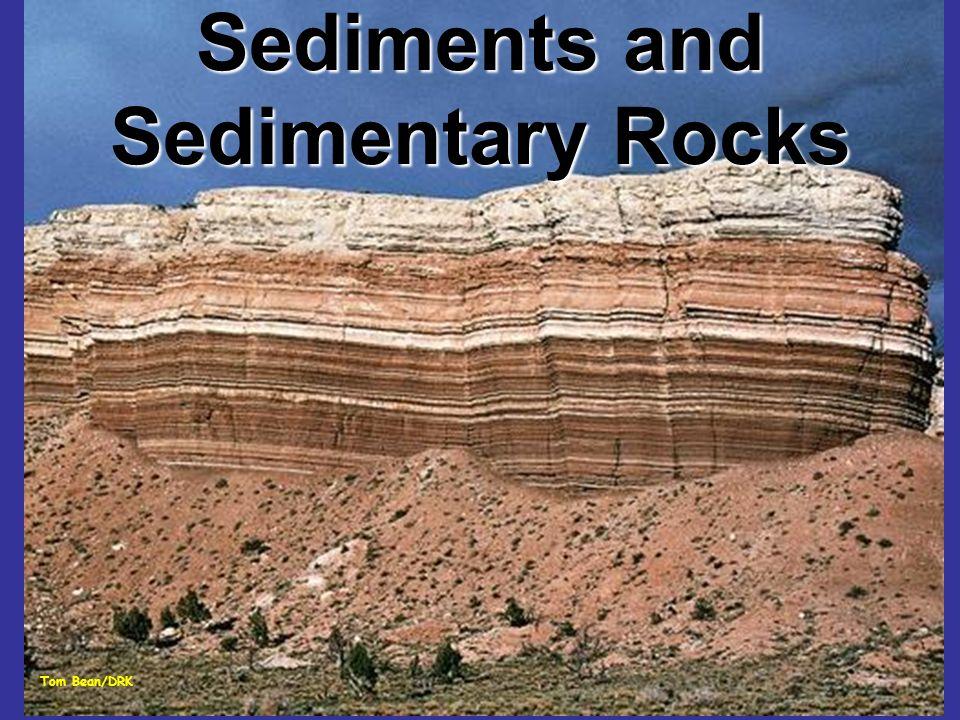 Rocce di origine chimica Evaporiti Carbonati, dolomie e rocce silicee di origine evaporitica Rocce residuali