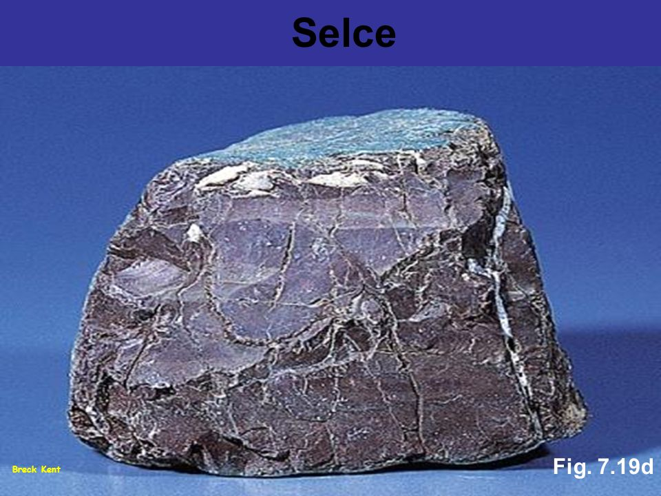 Breck Kent Fig. 7.19d Selce
