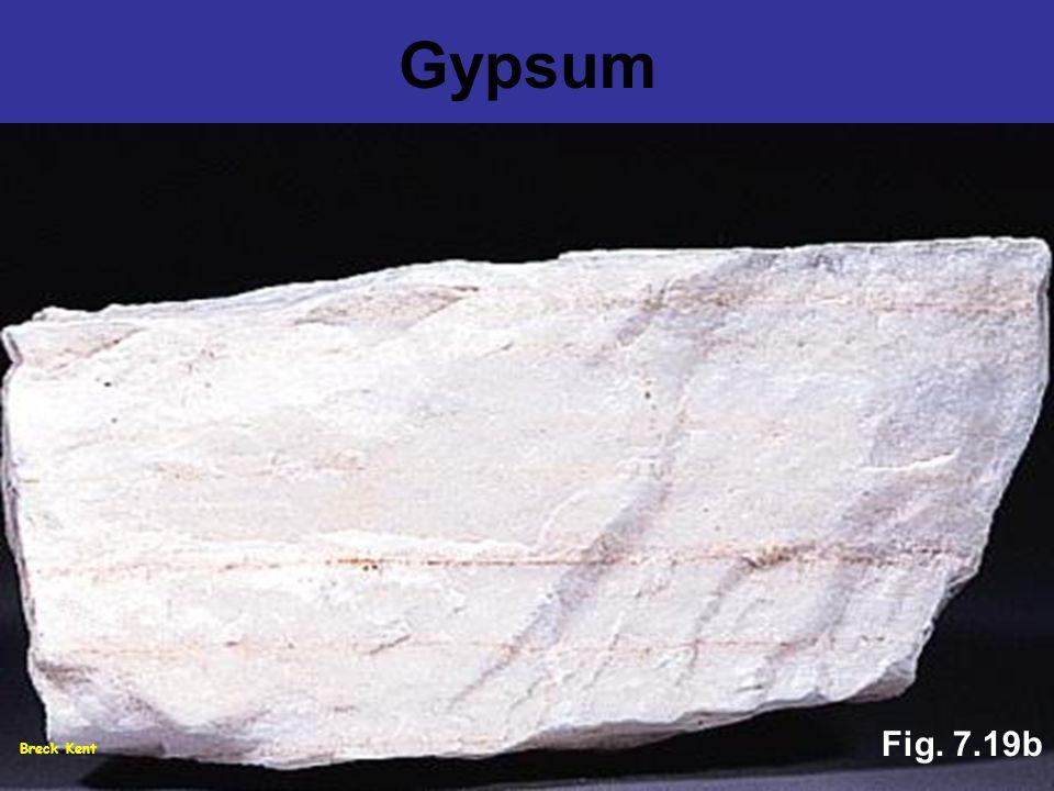 Breck Kent Fig. 7.19b Gypsum