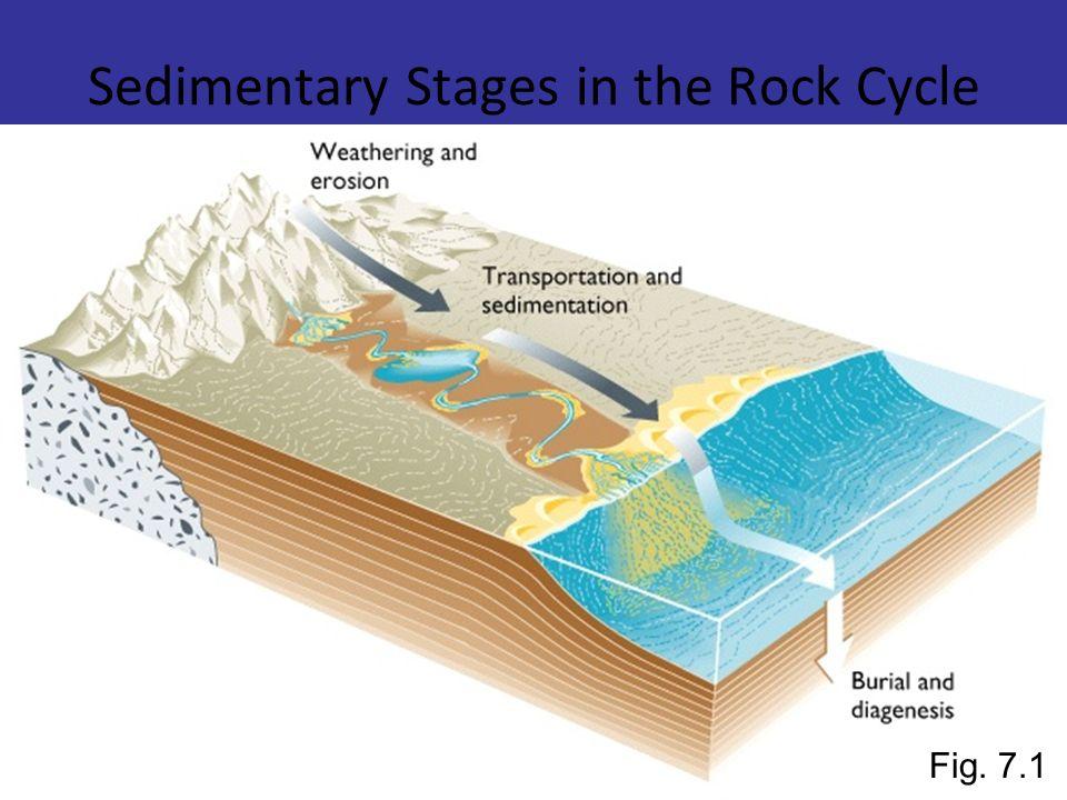 Ambienti sedimentari I Processi sedimentari avvengono in diversi ambienti, detti AMBIENTI SEDIMENTARI, la maggior parte dei quali in ambiente subacqueo.