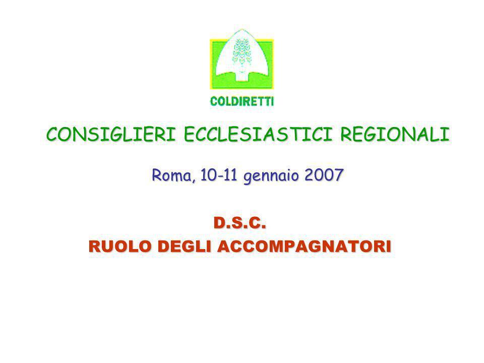 CONSIGLIERI ECCLESIASTICI REGIONALI Roma, 10-11 gennaio 2007 D.S.C. RUOLO DEGLI ACCOMPAGNATORI
