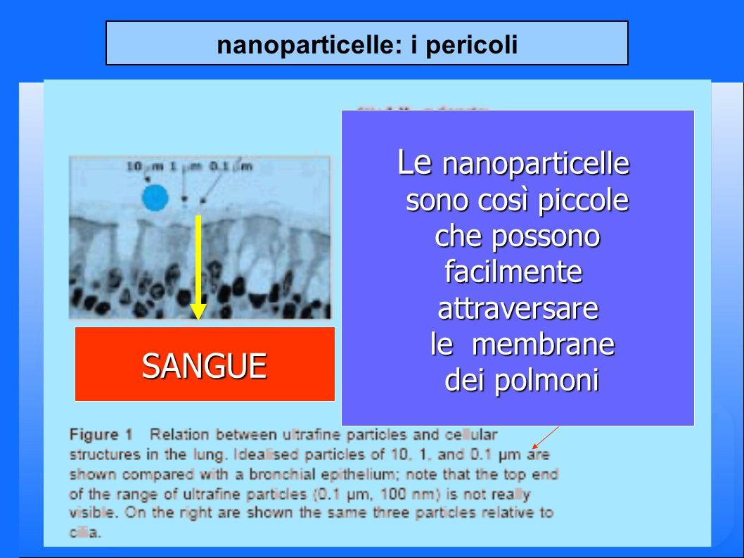 nanoparticelle: i pericoli Le nanoparticelle sono così piccole che possono che possonofacilmenteattraversare le membrane le membrane dei polmoni dei polmoni SANGUE