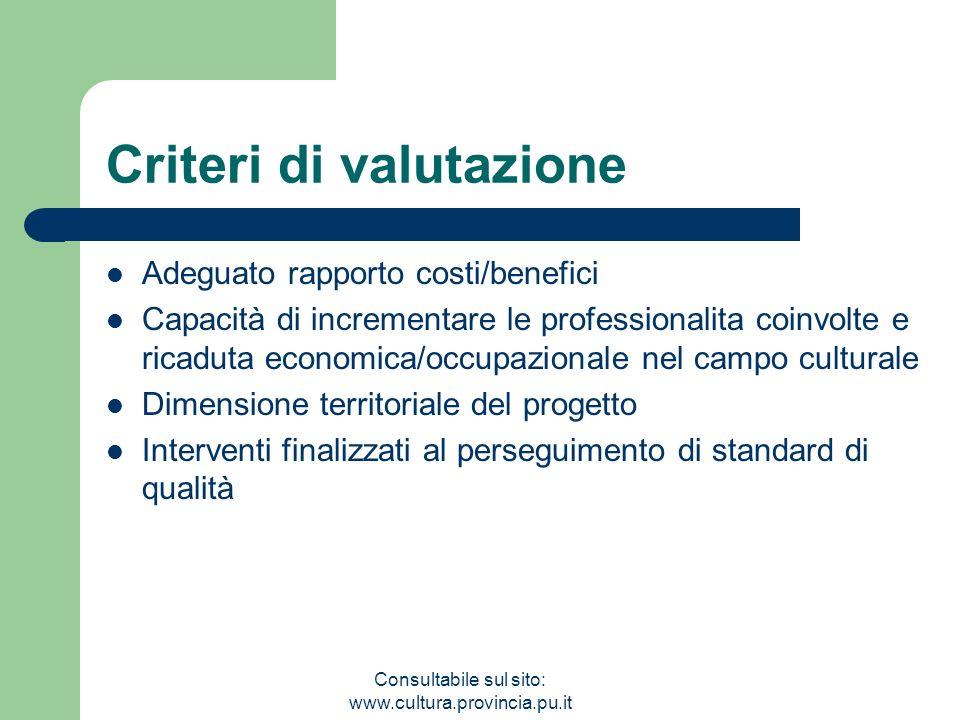 Consultabile sul sito: www.cultura.provincia.pu.it Criteri di valutazione Adeguato rapporto costi/benefici Capacità di incrementare le professionalita