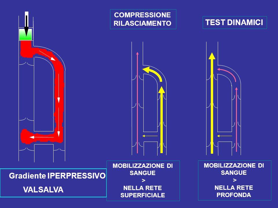 Gradiente IPERPRESSIVO VALSALVA COMPRESSIONE RILASCIAMENTO TEST DINAMICI MOBILIZZAZIONE DI SANGUE > NELLA RETE SUPERFICIALE MOBILIZZAZIONE DI SANGUE >