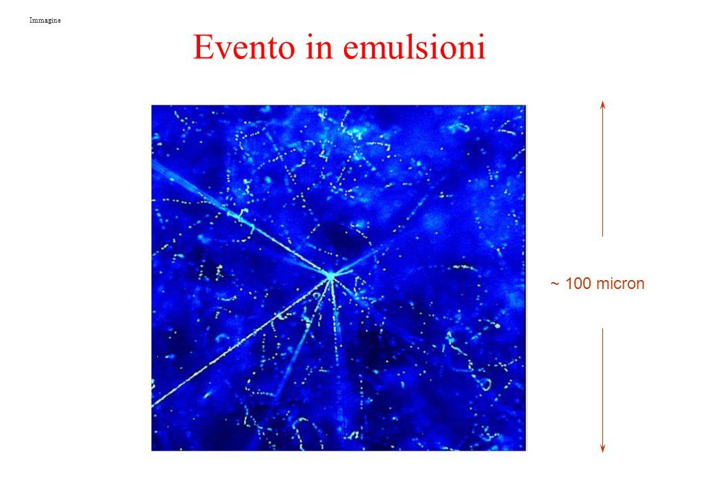 ~ 100 micron Immagine Evento in emulsioni