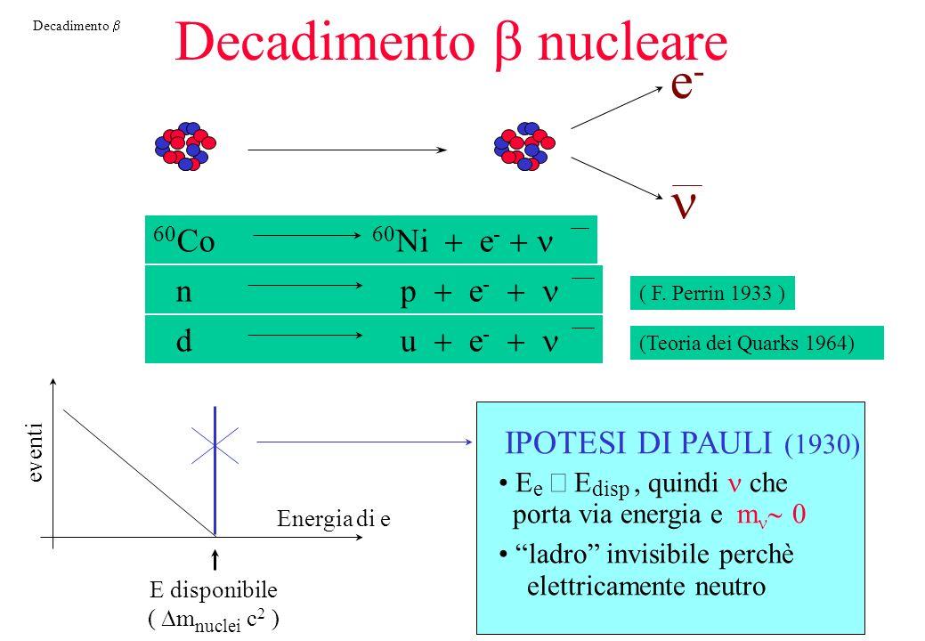 Decadimento Decadimento nucleare e-e- 60 Co 60 Ni e - n p e - ( F.