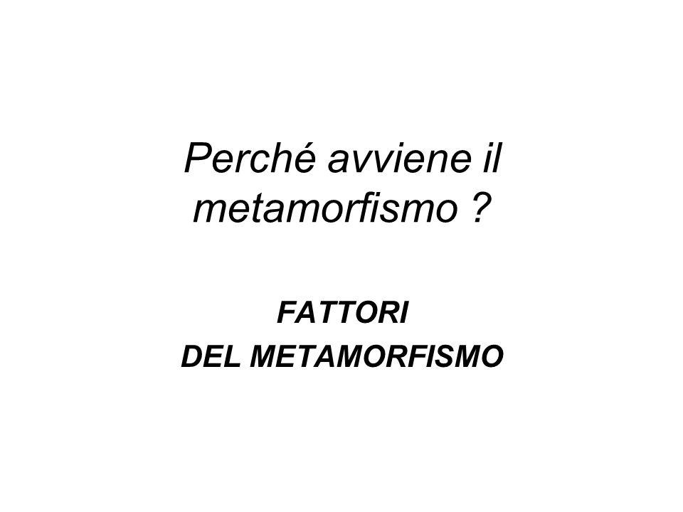 Perché avviene il metamorfismo ? FATTORI DEL METAMORFISMO