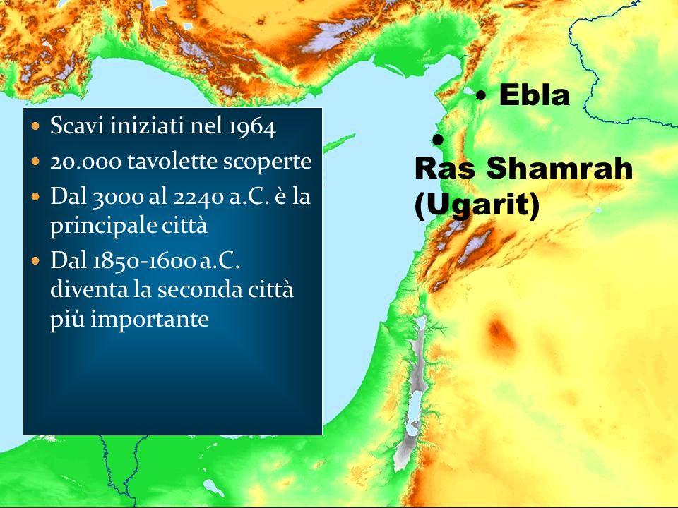 Ras Shamrah (Ugarit) Ebla Scavi iniziati nel 1964 20.000 tavolette scoperte Dal 3000 al 2240 a.C. è la principale città Dal 1850-1600 a.C. diventa la