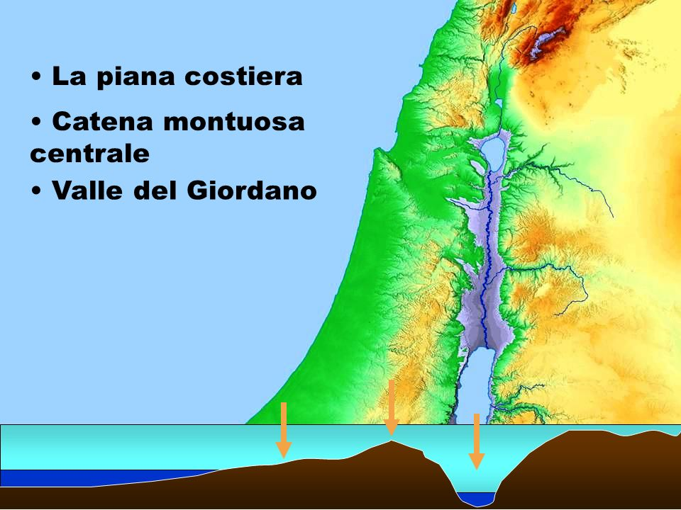 Catena montuosa centrale La piana costiera Valle del Giordano