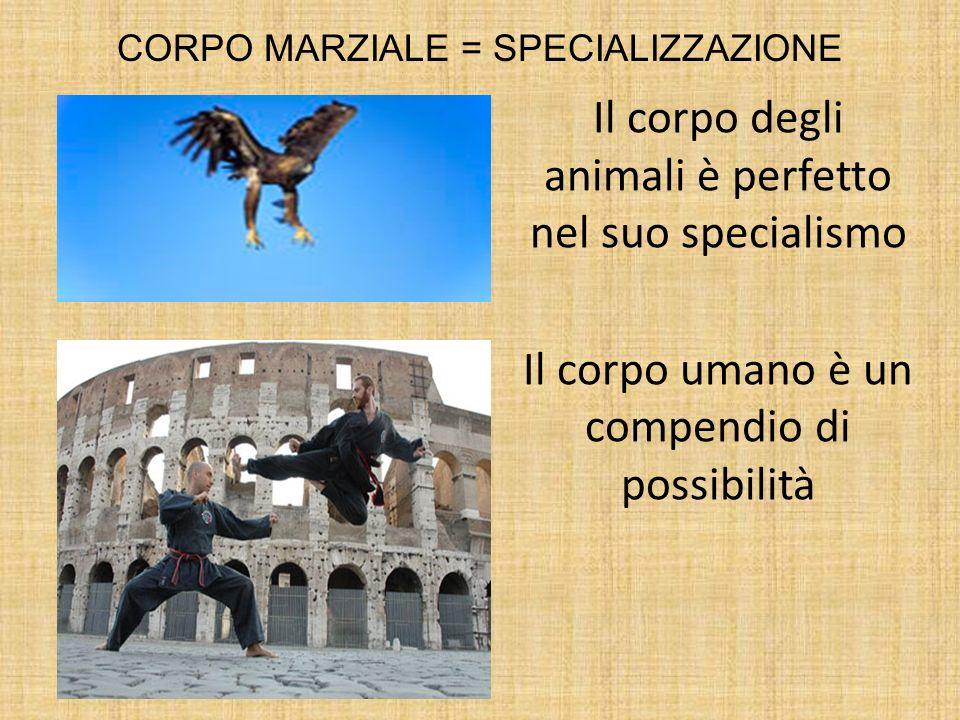 CORPO MARZIALE = SPECIALIZZAZIONE Il corpo degli animali è perfetto nel suo specialismo Il corpo umano è un compendio di possibilità