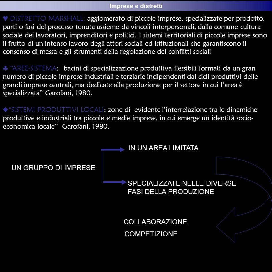 Il modello veneto di sviluppocc Imprese e distretti DISTRETTO MARSHALL : agglomerato di piccole imprese, specializzate per prodotto, parti o fasi del