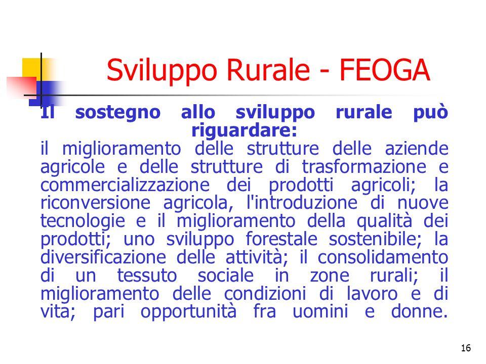 16 Sviluppo Rurale - FEOGA Il sostegno allo sviluppo rurale può riguardare: il miglioramento delle strutture delle aziende agricole e delle strutture