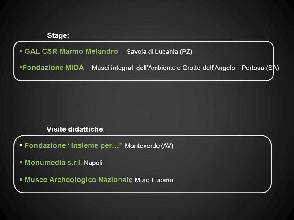 GAL CSR Marmo Melandro – Savoia di Lucania (PZ) Fondazione MIDA – Musei integrati dellAmbiente e Grotte dellAngelo – Pertosa (SA) Stage: Fondazione insieme per… Monteverde (AV) Monumedia s.r.l.