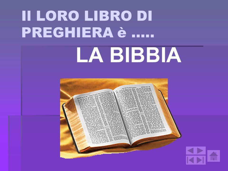 Il LORO LIBRO DI PREGHIERA è ….. LA BIBBIA