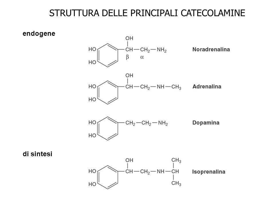 STRUTTURA DELLE PRINCIPALI CATECOLAMINE endogene di sintesi