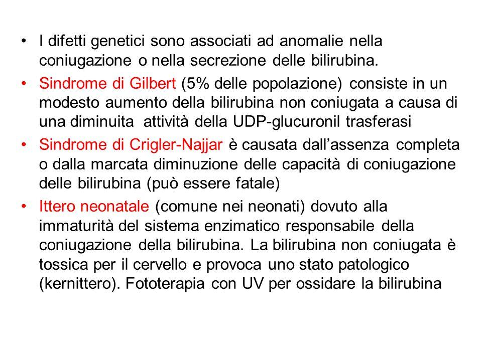 I difetti genetici sono associati ad anomalie nella coniugazione o nella secrezione delle bilirubina. Sindrome di Gilbert (5% delle popolazione) consi