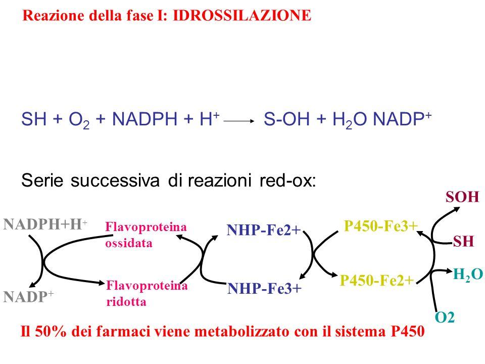 Reazione della fase I: IDROSSILAZIONE NADPH+H + NADP + Flavoproteina ossidata Flavoproteina ridotta NHP-Fe2+ NHP-Fe3+ P450-Fe3+ P450-Fe2+ SH SOH O2 H2
