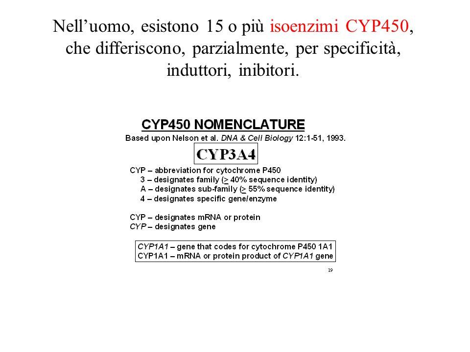 Nelluomo, esistono 15 o più isoenzimi CYP450, che differiscono, parzialmente, per specificità, induttori, inibitori.
