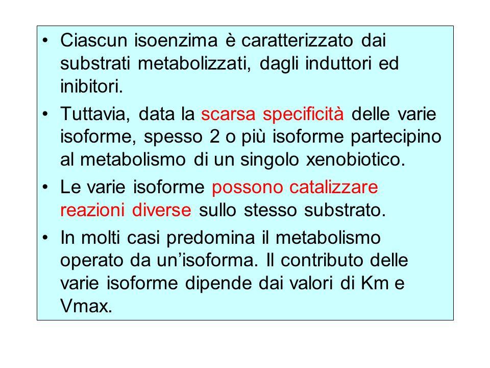 Ciascun isoenzima è caratterizzato dai substrati metabolizzati, dagli induttori ed inibitori. Tuttavia, data la scarsa specificità delle varie isoform