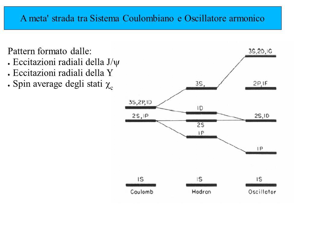 A meta' strada tra Sistema Coulombiano e Oscillatore armonico Pattern formato dalle: Eccitazioni radiali della J/ Eccitazioni radiali della Spin avera