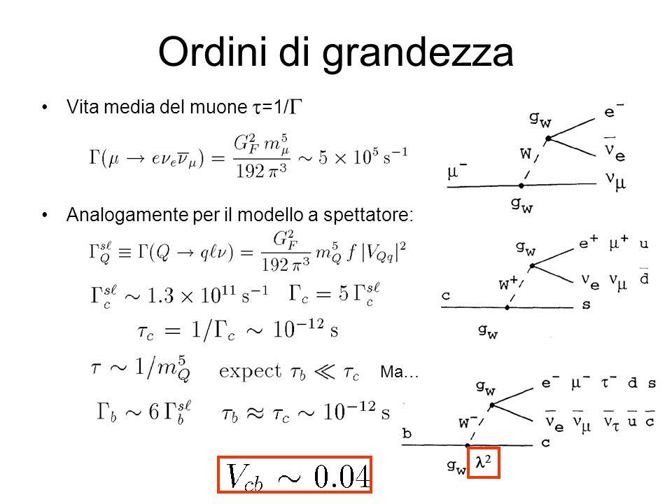 Ordini di grandezza Vita media del muone =1/ Analogamente per il modello a spettatore: Ma…