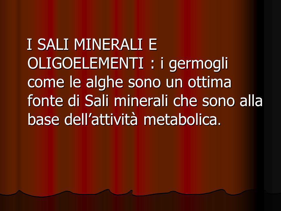 I SALI MINERALI E OLIGOELEMENTI : i germogli come le alghe sono un ottima fonte di Sali minerali che sono alla base dellattività metabolica. I SALI MI