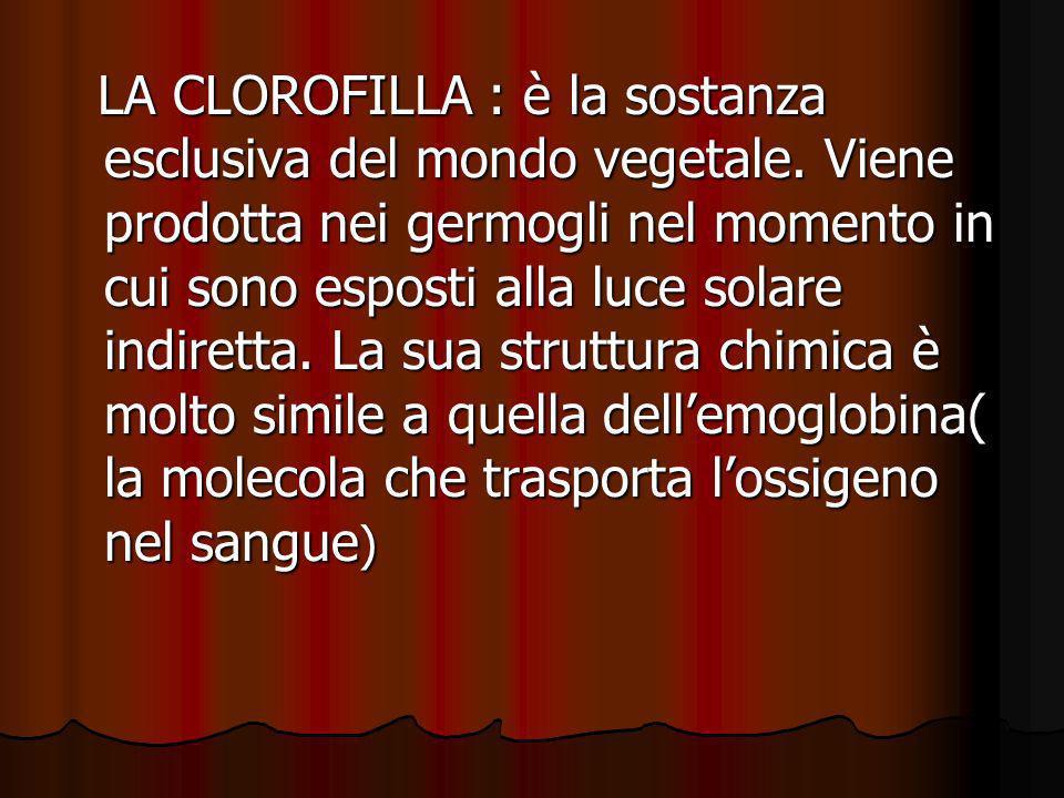 LA CLOROFILLA : è la sostanza esclusiva del mondo vegetale. Viene prodotta nei germogli nel momento in cui sono esposti alla luce solare indiretta. La