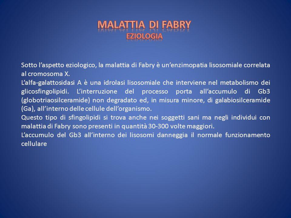 Sotto laspetto eziologico, la malattia di Fabry è unenzimopatia lisosomiale correlata al cromosoma X. Lalfa-galattosidasi A è una idrolasi lisosomiale