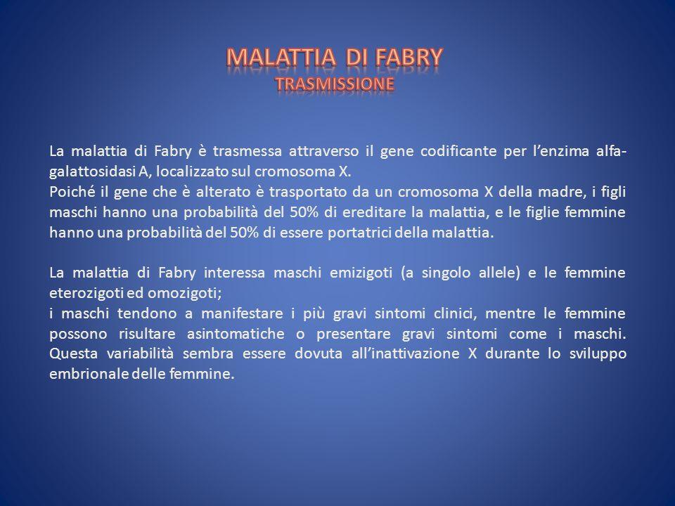 La malattia di Fabry è trasmessa attraverso il gene codificante per lenzima alfa- galattosidasi A, localizzato sul cromosoma X. Poiché il gene che è a