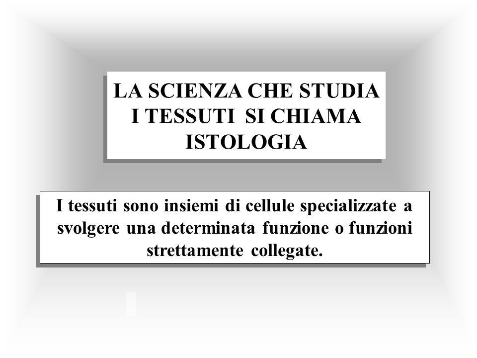LA SCIENZA CHE STUDIA I TESSUTI SI CHIAMA ISTOLOGIA I tessuti sono insiemi di cellule specializzate a svolgere una determinata funzione o funzioni str