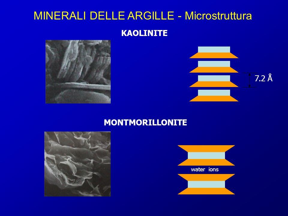 MINERALI DELLE ARGILLE - Microstruttura 7.2 Å KAOLINITE MONTMORILLONITE water ions