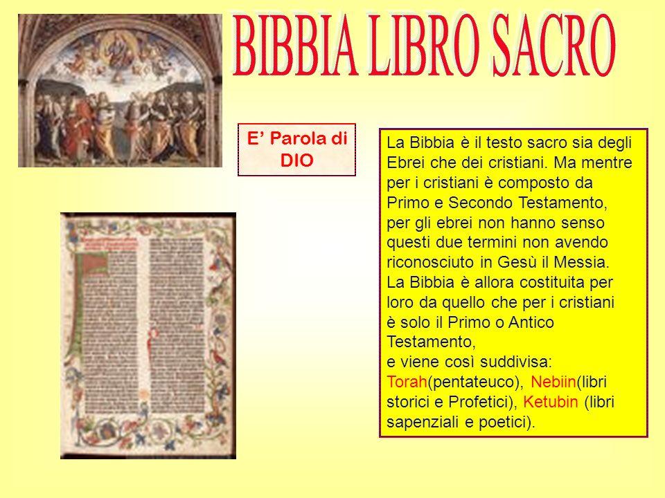 La Bibbia è il testo sacro sia degli Ebrei che dei cristiani. Ma mentre per i cristiani è composto da Primo e Secondo Testamento, per gli ebrei non ha
