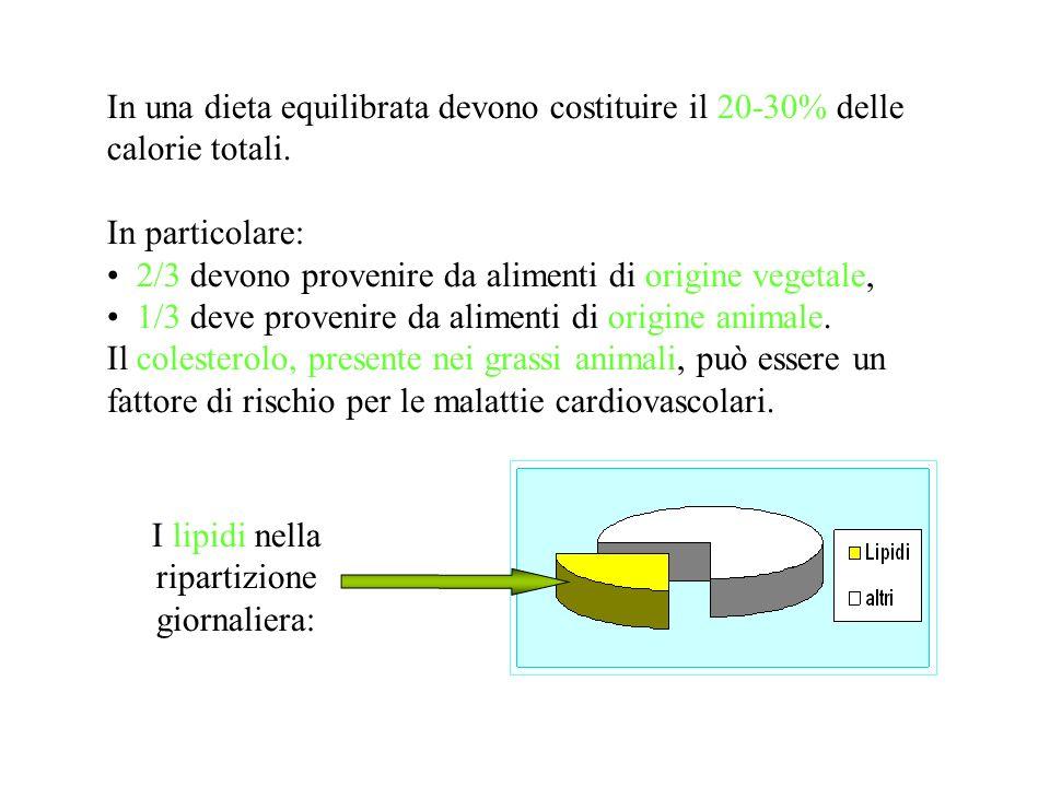 In una dieta equilibrata devono costituire il 20-30% delle calorie totali. In particolare: 2/3 devono provenire da alimenti di origine vegetale, 1/3 d