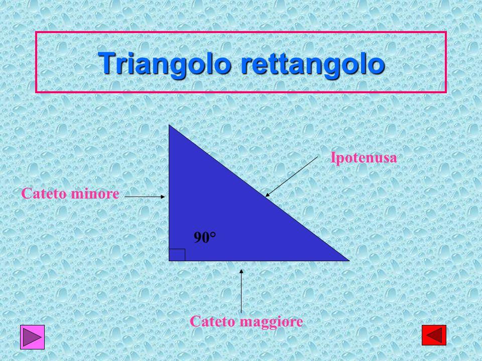 15 Triangolo rettangolo Ipotenusa Cateto maggiore Cateto minore 90°