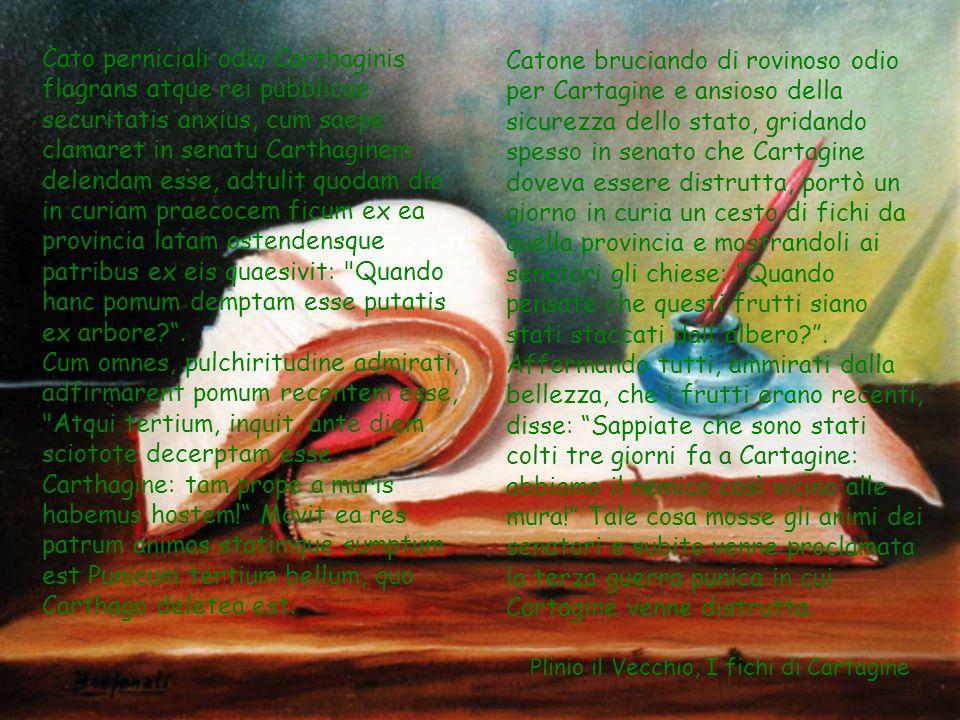 Plinio il Vecchio Plinio è una miniera inesauribile di informazioni sui prodotti alimentari e sui costumi Romani, nonché quello al quale dobbiamo magg