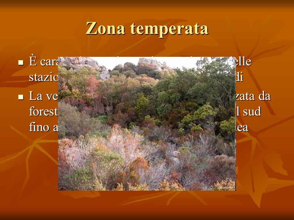 Zona temperata È caratterizzata da un alternarsi netto delle stazioni con periodi caldi e periodi freddi È caratterizzata da un alternarsi netto delle
